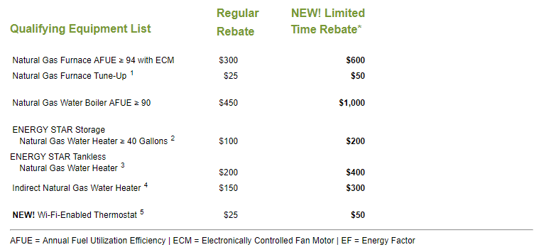 List of rebates from NYSEG's website.