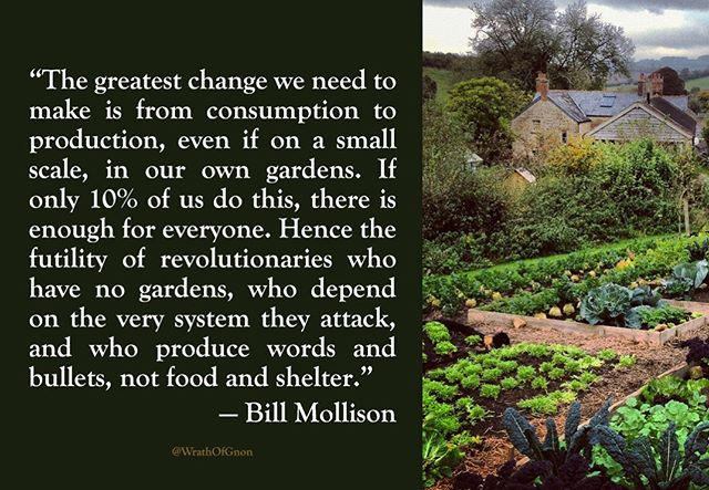 """Every society that grows extensive lawns could produce all its food on the same area, using the same resources, and . . . world famine could be totally relieved if we devoted the same resources of lawn culture to food culture in poor areas. These facts are before us. Thus, we can look at lawns, like double garages and large guard dogs, [and Humvees and SUVs] as a badge of willful waste, conspicuous consumption, and lack of care for the earth or its people.  Most lawns are purely cosmetic in function. Thus, affluent societies have, all unnoticed, developed an agriculture which produces a polluted waste product, in the presence of famine and erosion elsewhere, and the threat of water shortages at home."" ~Bill Mollison"