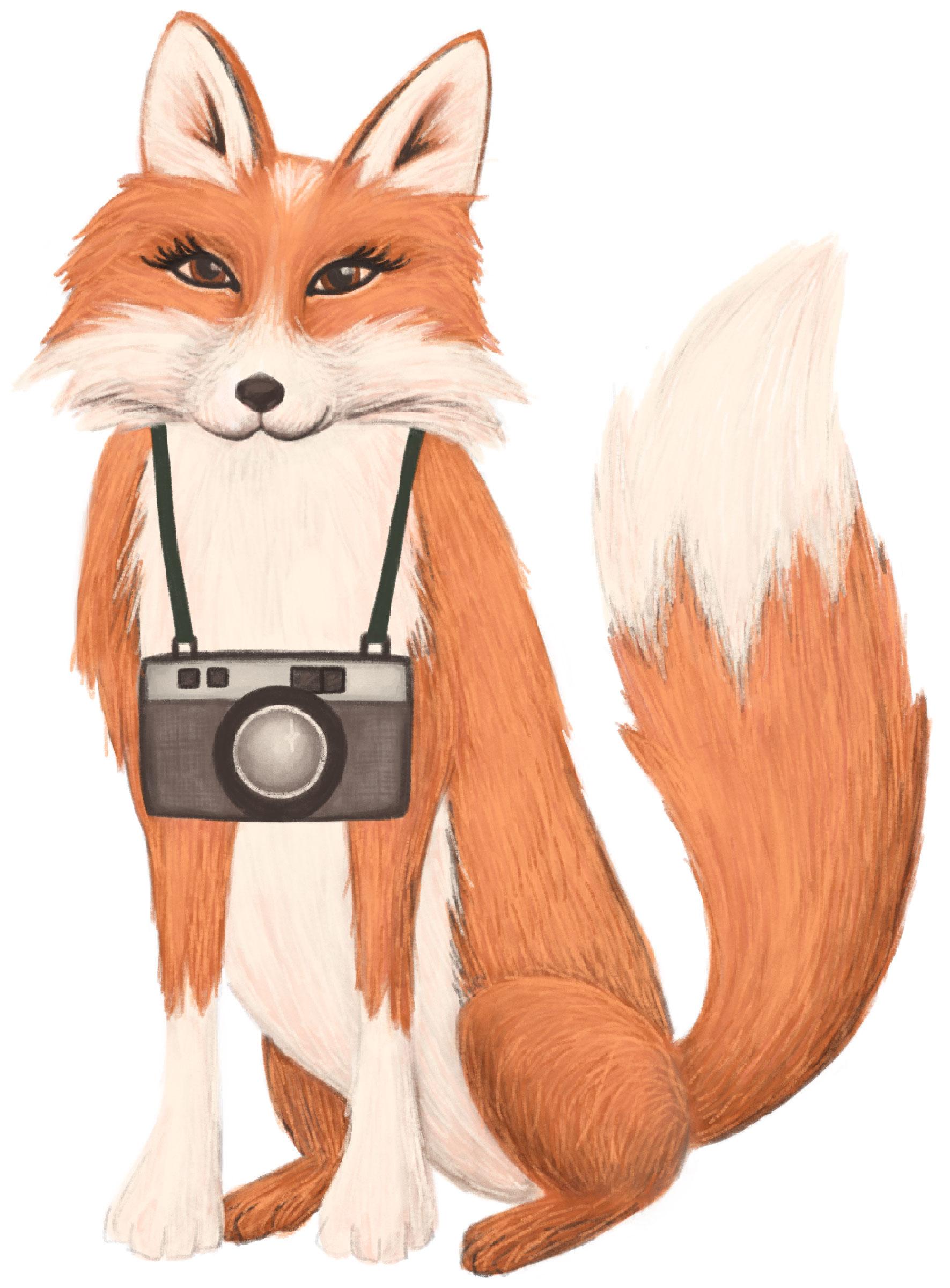 StefFoxPhotography Logo-fox.jpg