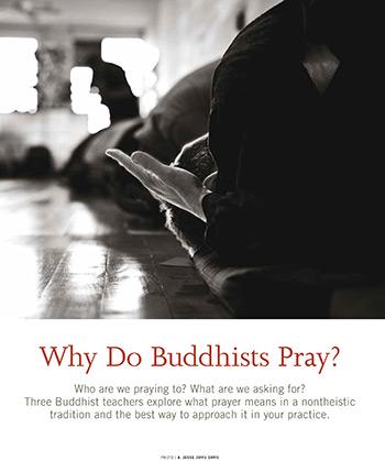 Why Do Buddhists Pray? in Buddhadharma Magazine