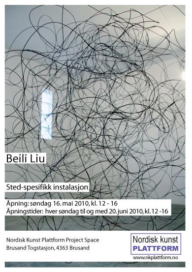 Beili Liu (China), site-specific installation