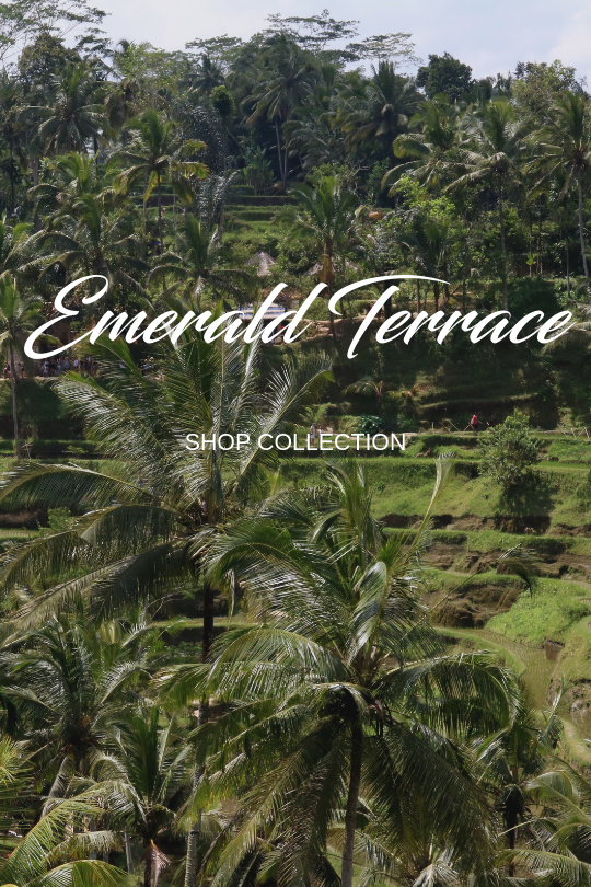 Rice Terraces Collection.png