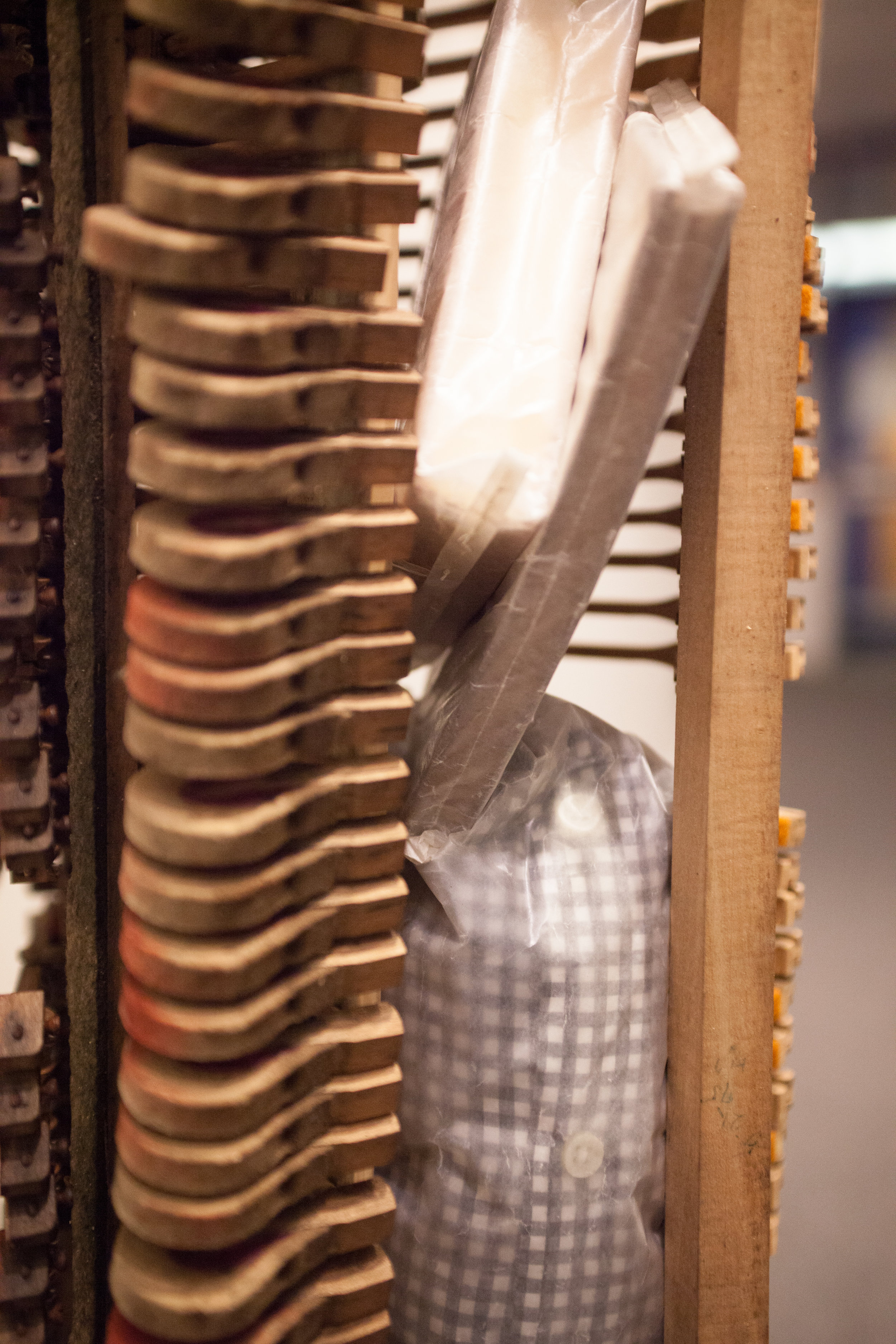 Cage and Beuys Rummaged  (detailed view)