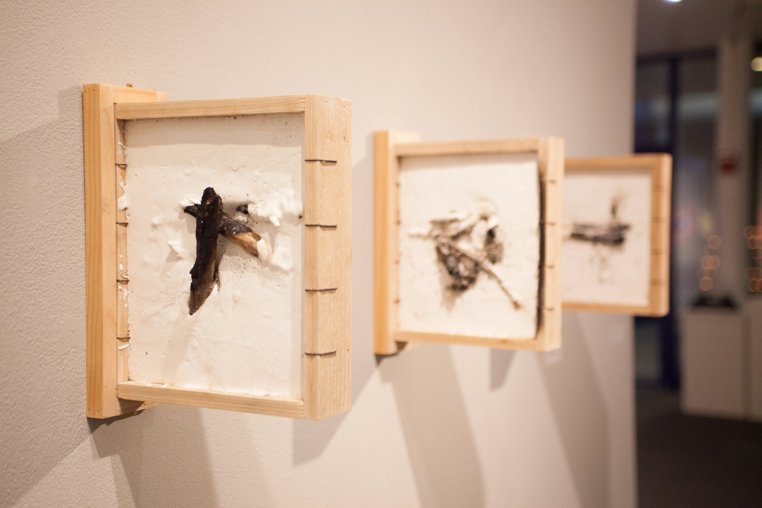 Fire Fossils   plaster, wood, wire, sticks, fire  dimensions variable