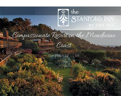 StanfordInn_LOGO PHOTO_web3.jpg