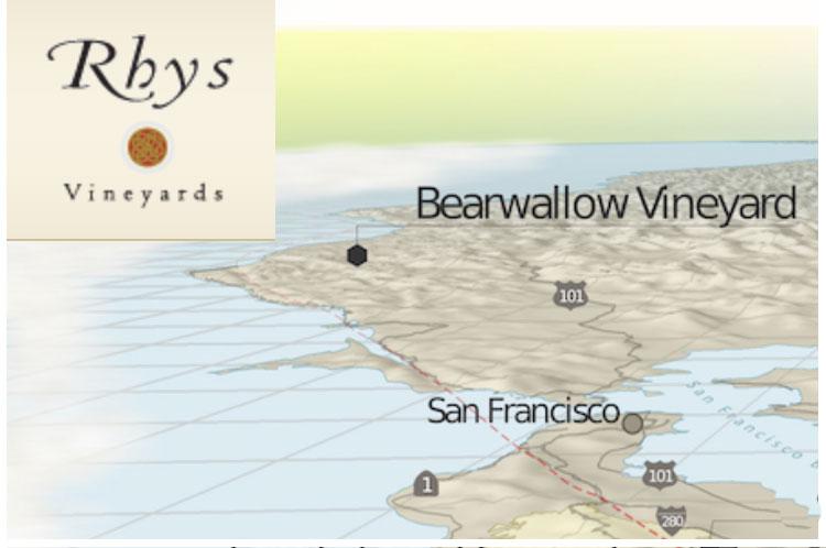 RHYS-VINEYARD_Bearwillow-VIneyard-AV.jpg