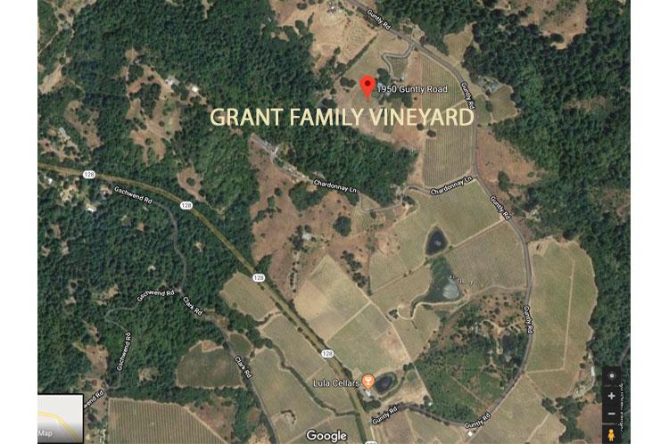 Grant-Family-Vineyard-LOGO-on-SQUARESPACE.jpg