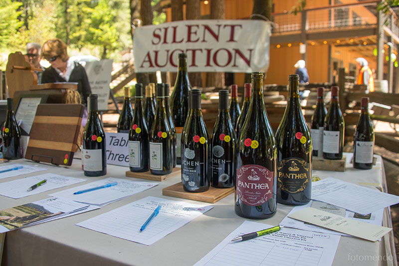 004_AVPinotFestival_2018_05_19_Fotomendo_DSC2175_auction.jpg