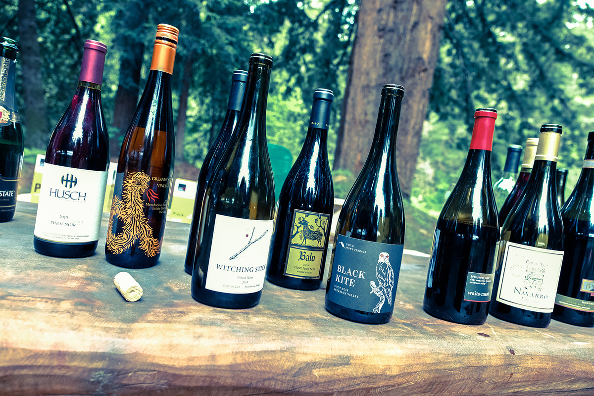 Wines with tree in back WEB.jpg