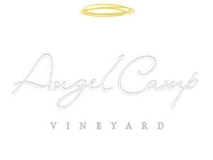 Angel-Camp_LOGO-464x348.jpg