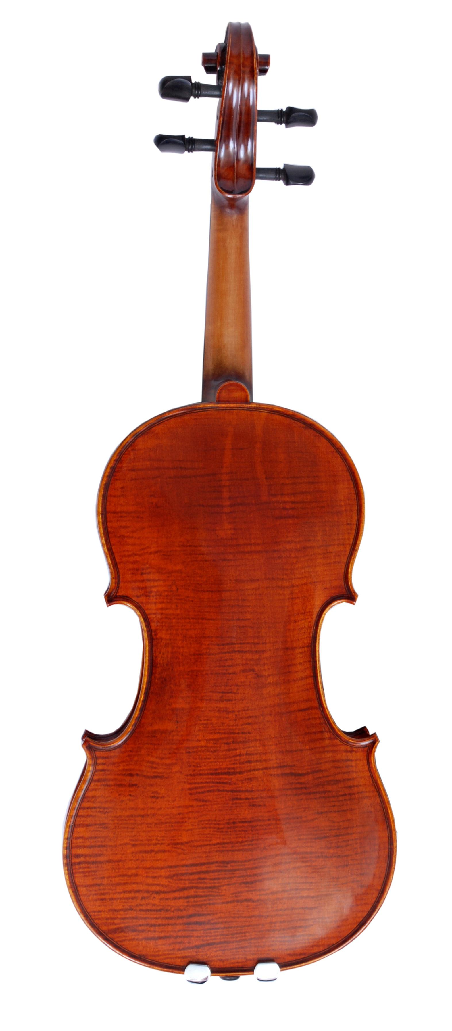 Meisel+6107+violin+back.jpg