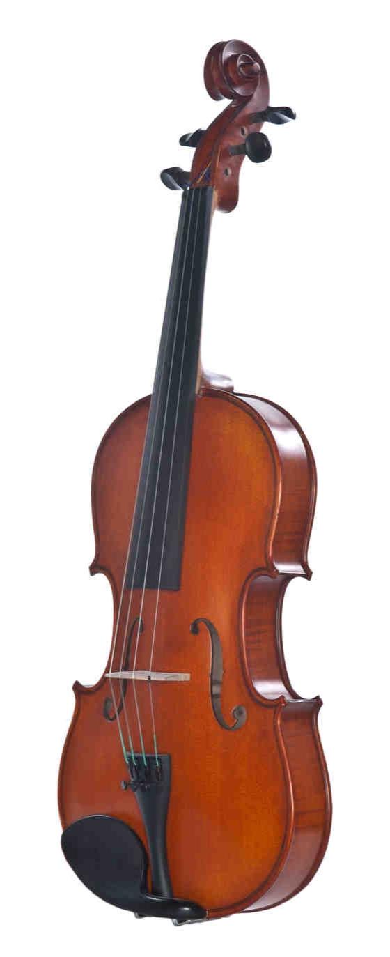 Meisel+Viola+7294VA.jpg