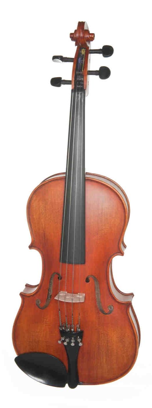 Mozart+Viola+7192A.jpg