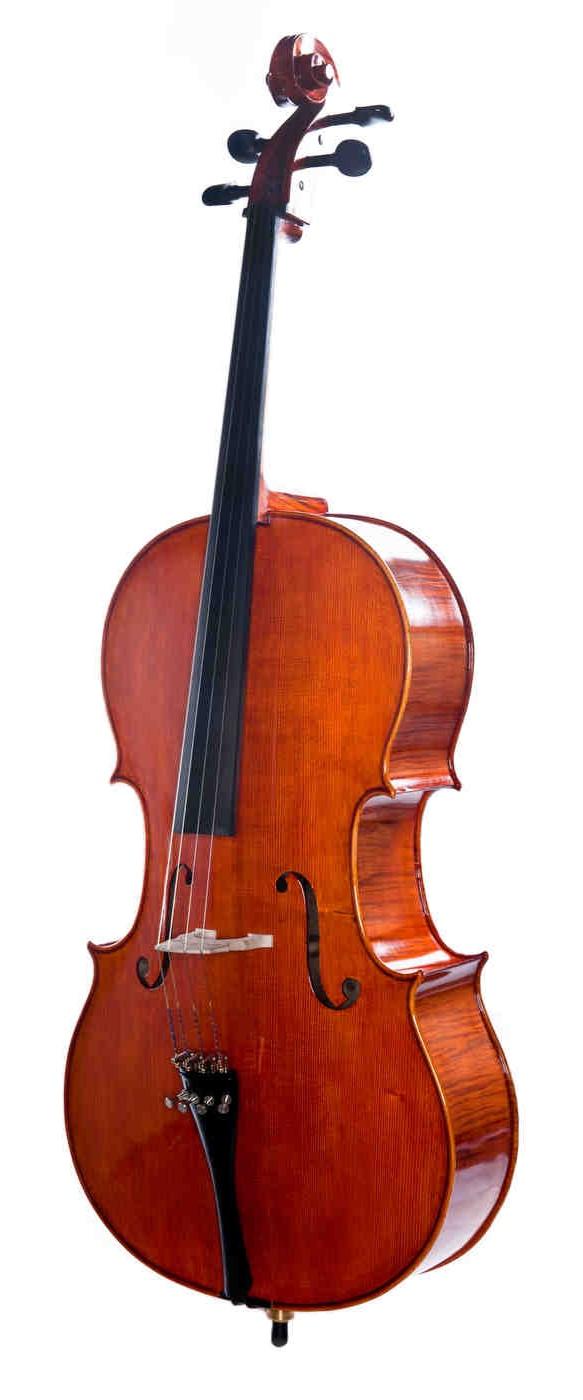 Erwin+Otto+Cello+8022CL.jpg