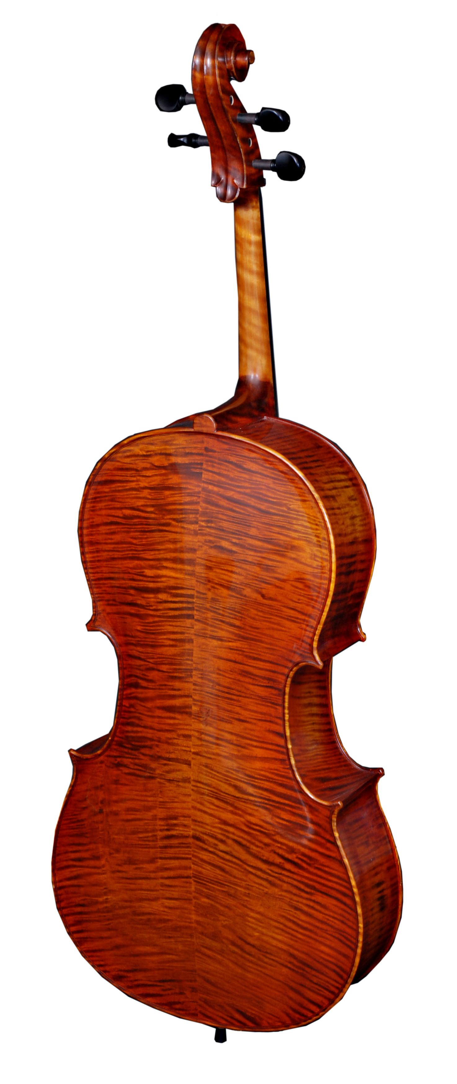 Erwin Otto 8033 C cello back.jpg