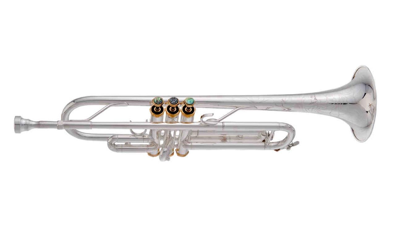 Trumpet%2BTP608B.jpg