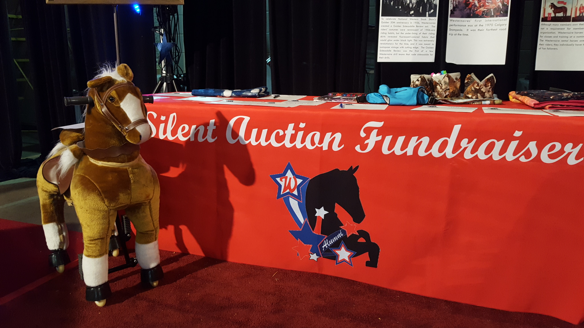 """""""Peanut"""" the pony-cycle was one of over 75 auction items in or 2016 silent auction fundraiser"""