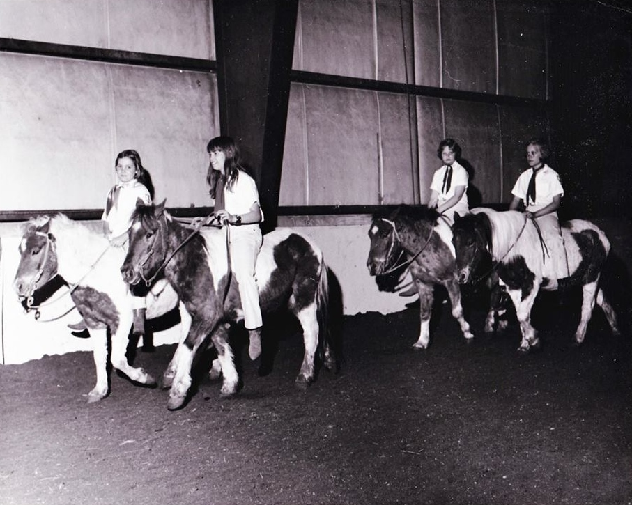 "Practice by the 1970 Westernaires pony team.  That's Angel on the far left, and Devil Child behind (on the rail) -- both offspring of the original Shetland pony herd that once roamed free on South Table Mountain.  Judy (Hudgins) Kinyon, about her photo: ""1970 Pony Team. 1st pair on the rail is Angel.  My sister (JoAnne Hudgins) trained him, and the 2nd pair on the rail is Devil Child, I trained her.  They were 2-year-olds, and had never been touched when we asked permission from Mr. Wyland to train them.  Our first show was lunging them over the liberty jumps, having them stand on boxes with heads bowed etc. Such a small beginning to what it is now."""