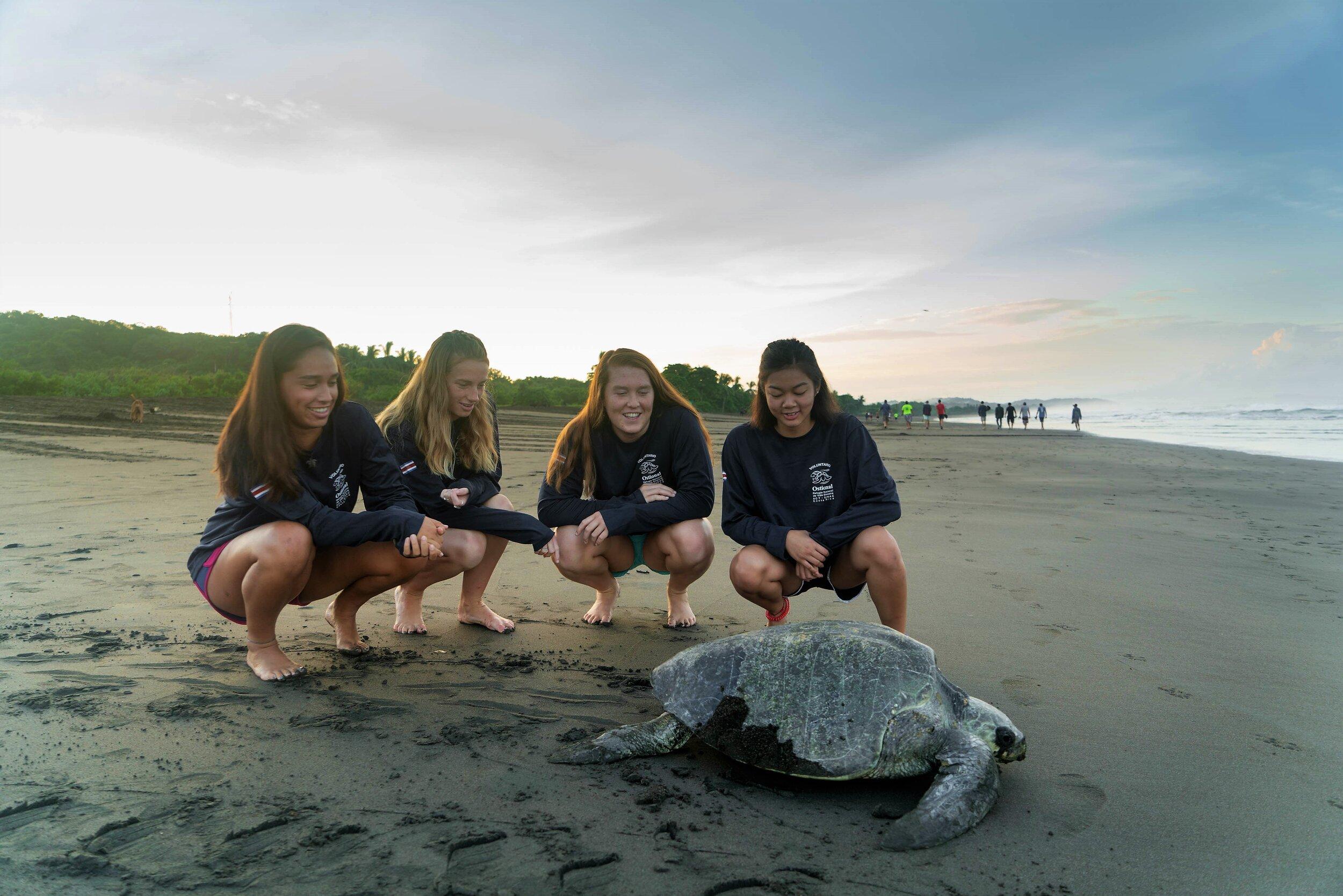 girls with turtles.jpg
