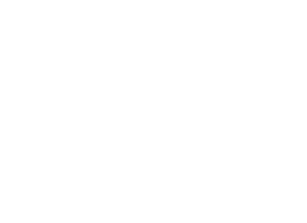 ZTH-icons-A-3-trouble-tickets.png