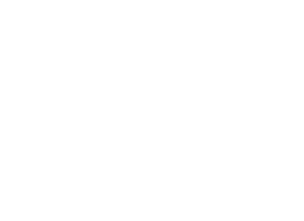 ZTH-icons-A-point5-trouble-tickets.png