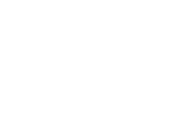 ZTH-icons-A-20percent-increase-bandwidth.png