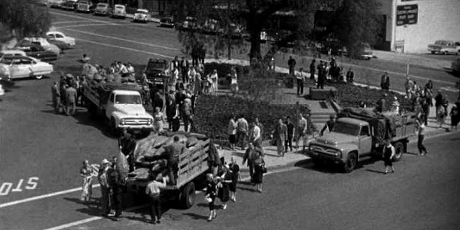 Invasion-of-the-Body-Snatchers-1956_trucks.jpg