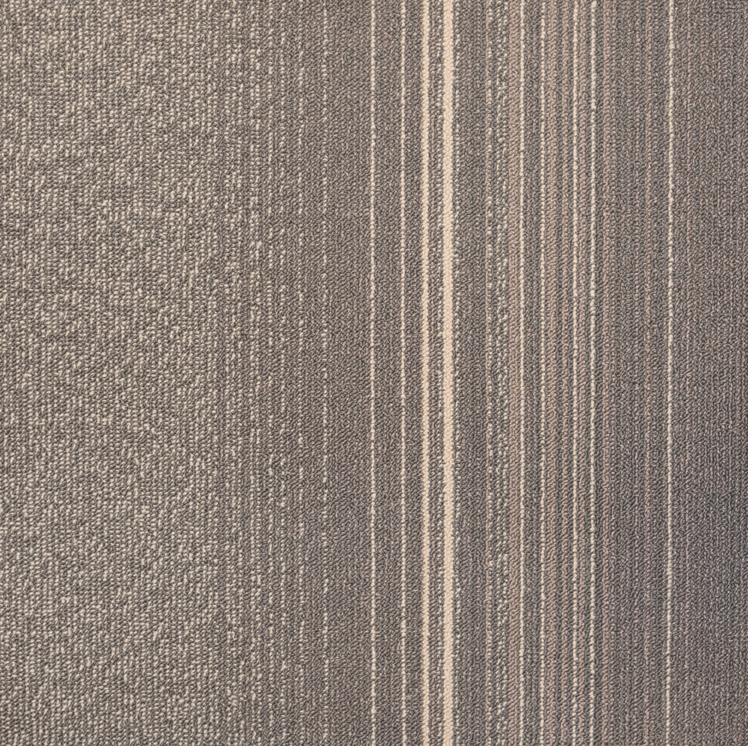 Taupe - 707400