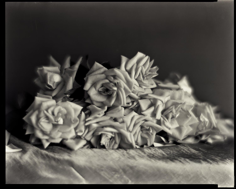 flower 001.jpg