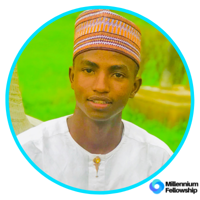 Muhammad Sani Kassim _, abu,      millennium,      sdg17,     nigeria,      2019,      africa,