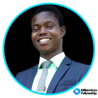 Durodola Olamide Isaac _, oau,      millennium,      sdg17,     nigeria,      2019,      africa,