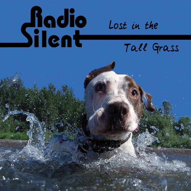 Radio Silent - Lost in the Tall Grass