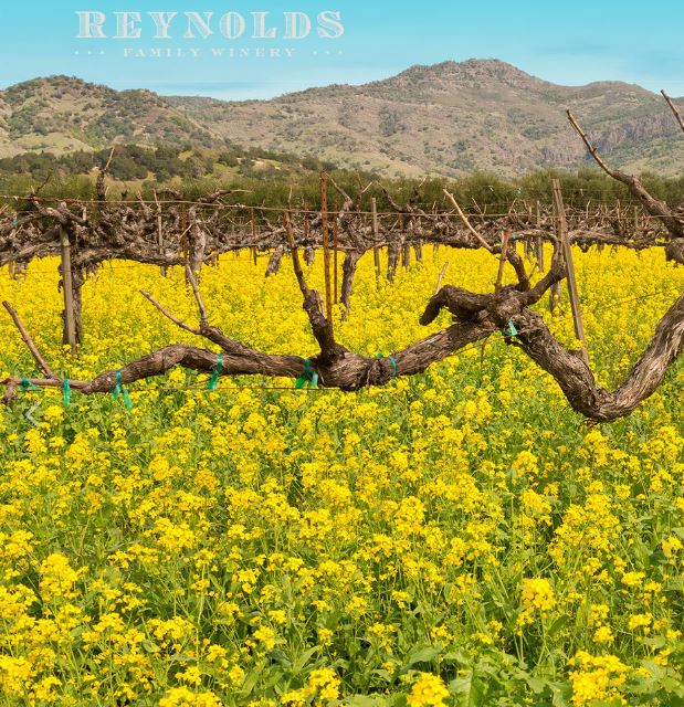 Source: Reynolds Family Winery