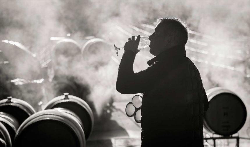 Source: Ancien Wines