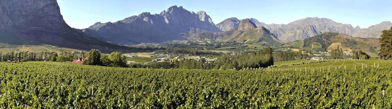 Source: Chamonix Wine