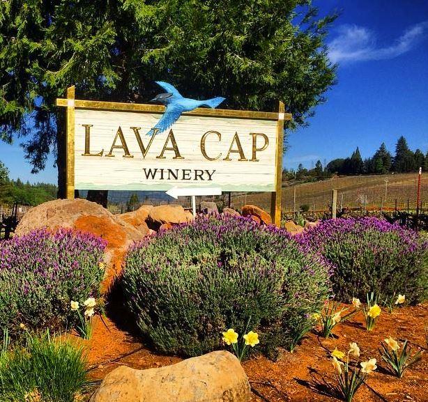 Source:Lava Cap Winery