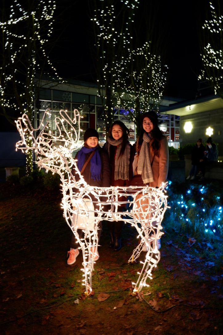 lights at lafarge coquitlam