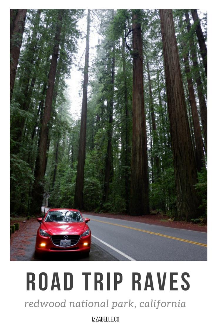 road trip redwood national park.png