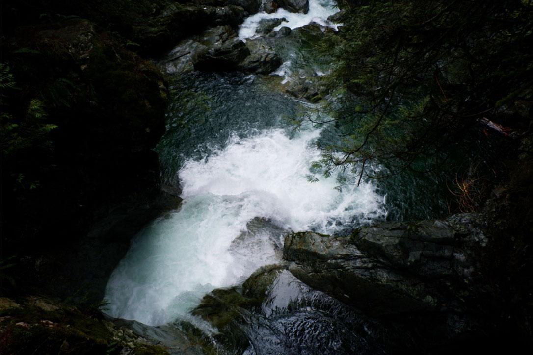 lynn-canyon-9.jpg
