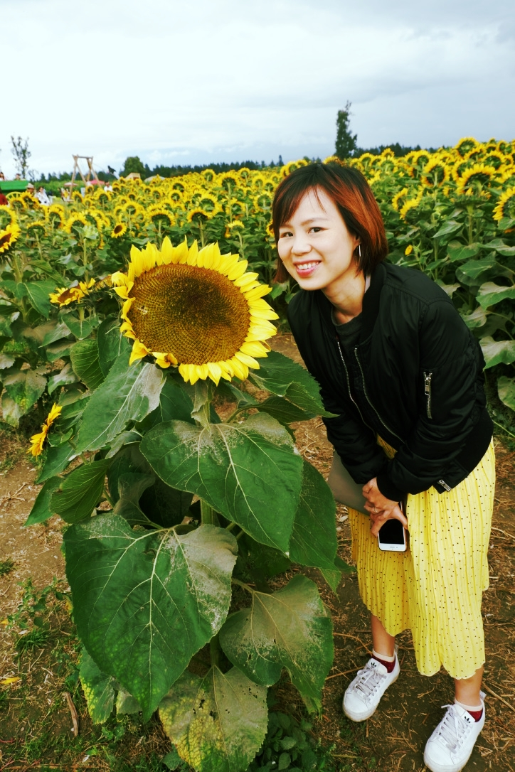 chilliwack sunflower festival review