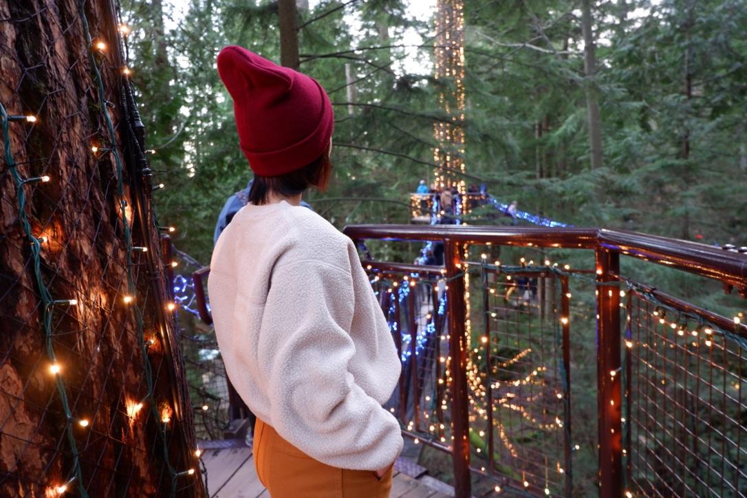 canyon lights capilano suspension bridge park
