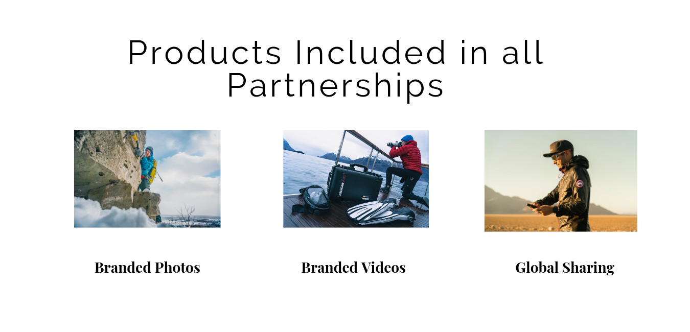 Products included in all partnerships.png