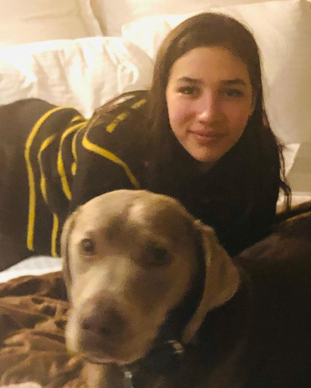 Juliet and Storm. Storm was trained for a year to be of service to Juliet in her Lyme journey I am so proud of Juliet for her first full year at Pratt. Thank you Storm. #lymewarriors #servicedog #lymedisease #chronicillness #lymedontkillmyvibe #lymediseaseawareness #helpingotherssucceed
