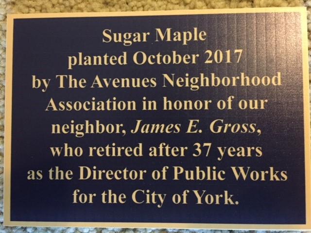 Tree plaque.JPG