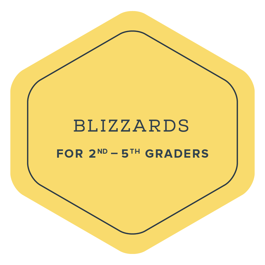 Blizzards Badge | The Elements DC