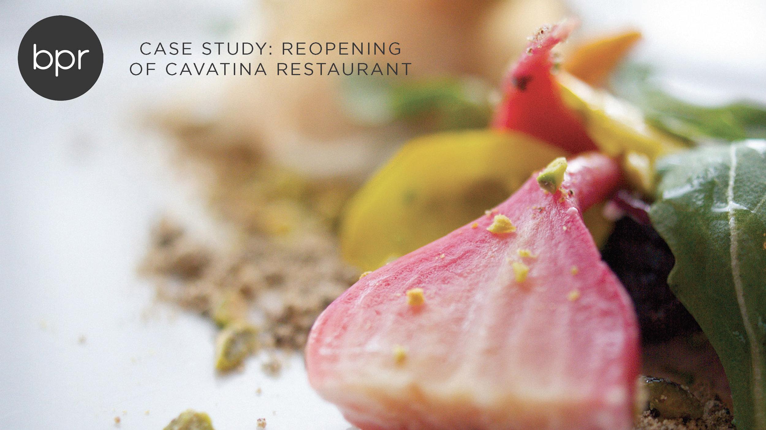 Cavatina Case Study_Page_1.jpg