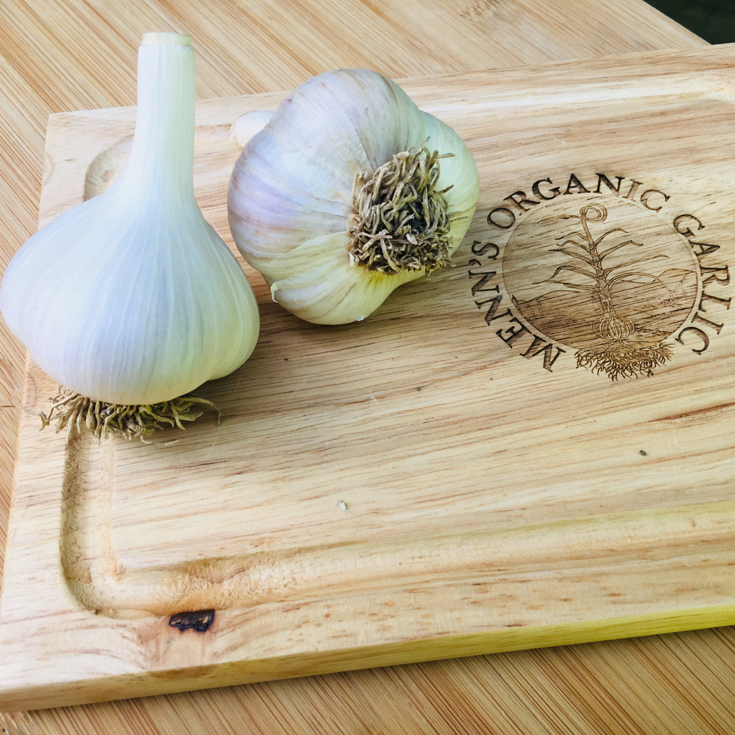 Georgian Fire (Sold Out) - A large porcelain hardneck garlic that has a robust spicy flavor and lingering aftertaste. The bulbs can store into spring and contain 4-6 cloves. This varietyis great for salsa and salads.