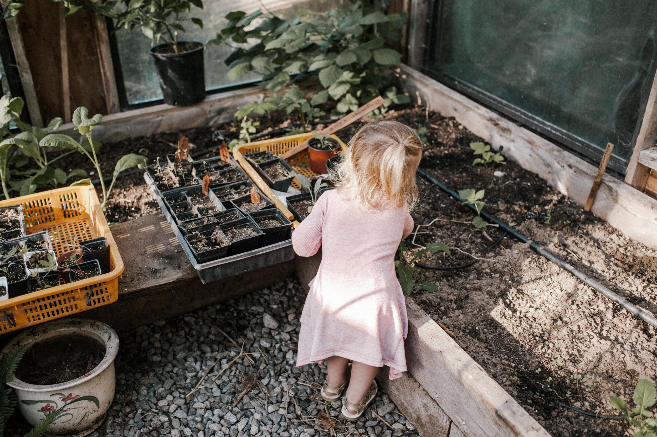 garden-34.jpg