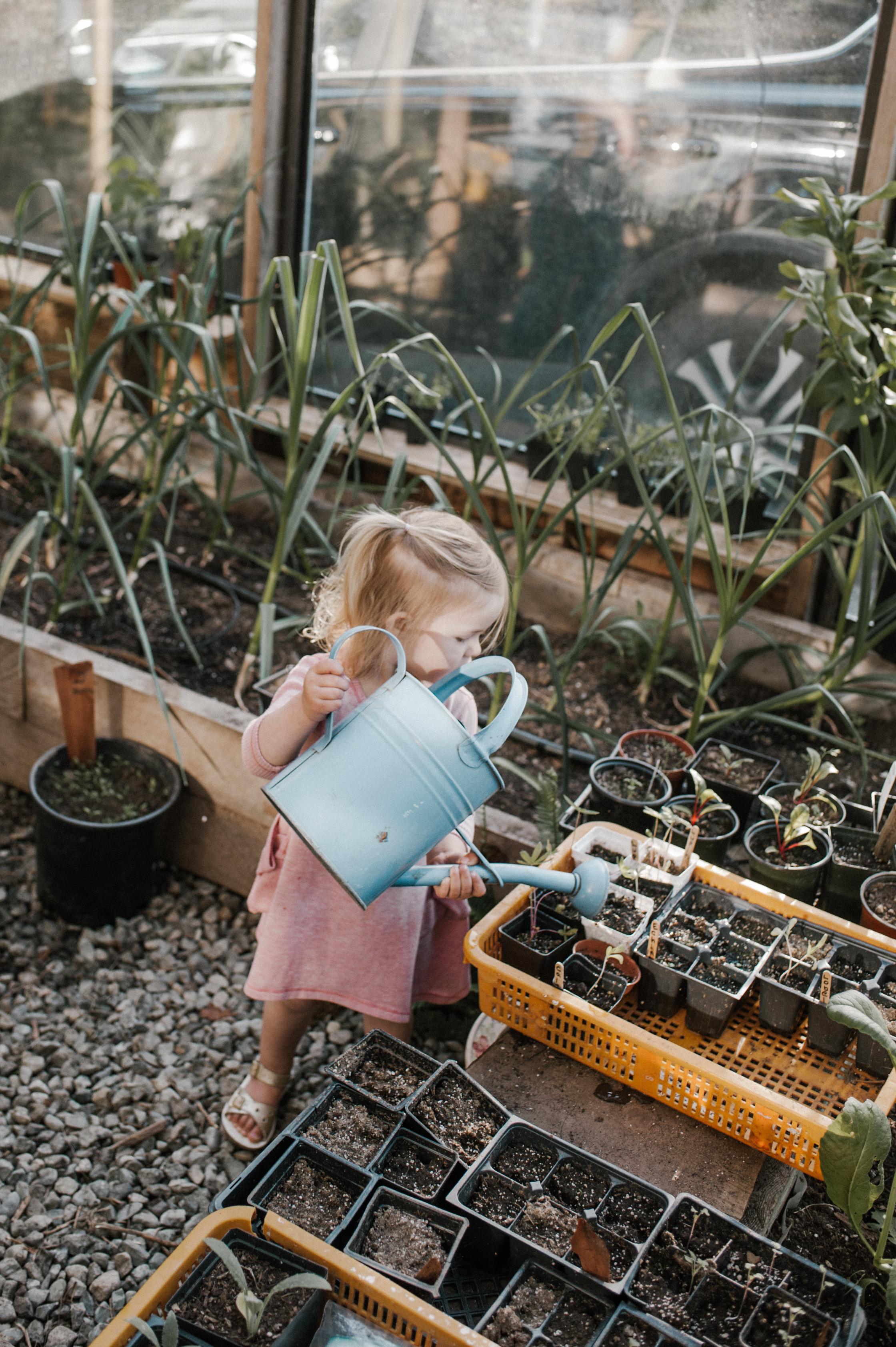 garden-58.jpg
