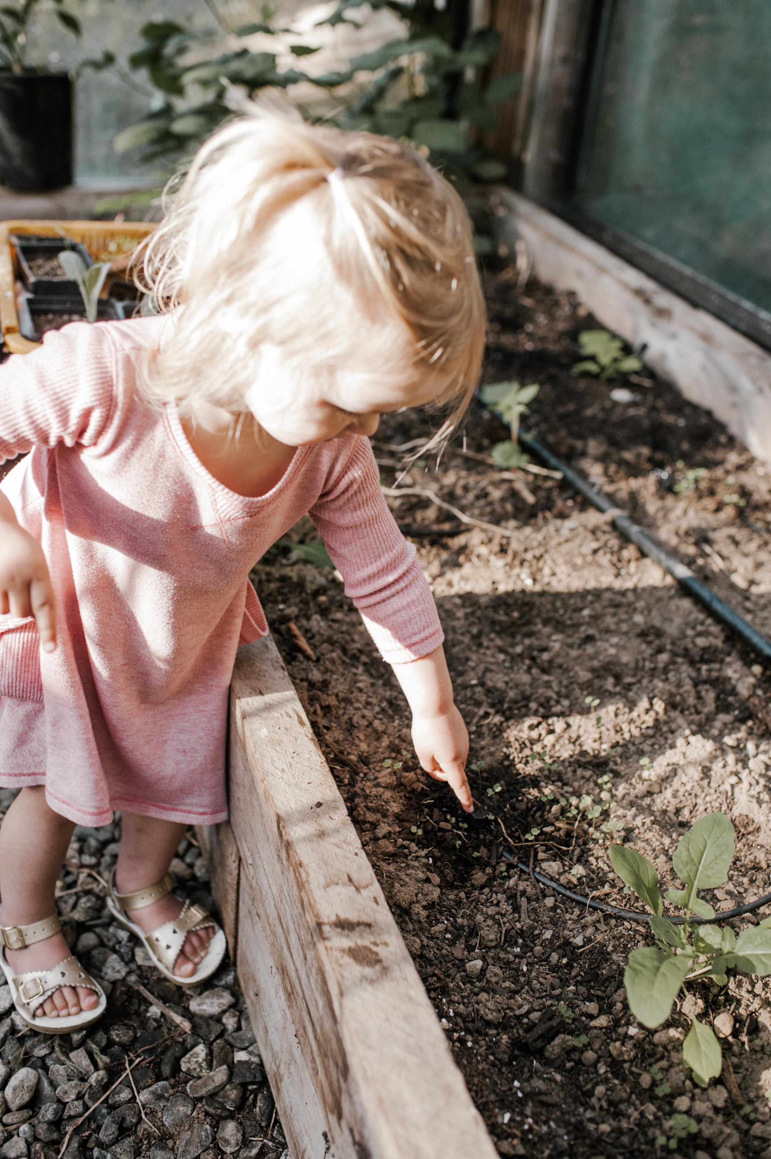 garden-37.jpg